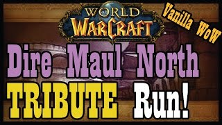 Dire Maul North Tribute Run! [Vanilla / Classic World of Warcraft Let's Play]