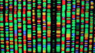 How private is DNA collected from at-home tests?