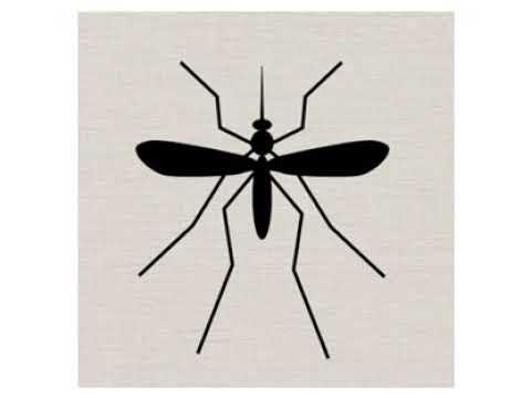 Mosquito Sound Effect