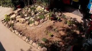 Декоративное оформление маленького клочка земли возле прилавка