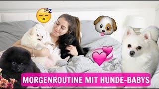 Meine echte Morgenroutine 😴 mit Pomeranian Hunde-Welpen 🐶  l Sara Desideria