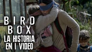 Bird Box: A Ciegas I La Historia en 1 Video