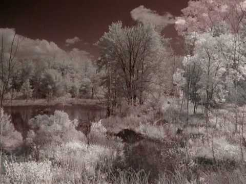 Infra-Red Photography - New Hampshire