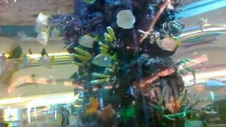 hyderabad gvk one shopping mall inside a big fish aquarium colourfull fishes