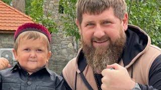 Кадыров поставил на место Тамаева за Хасбика. Кадры