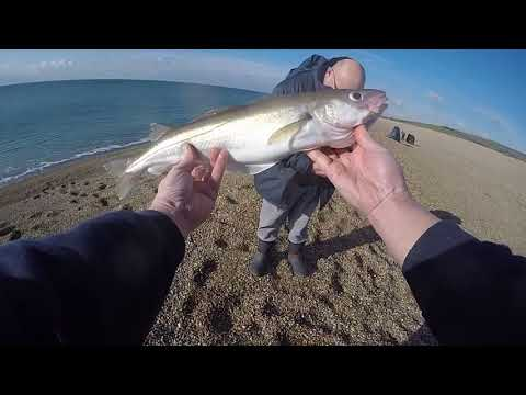 Glorious Winter Fishing Beyond The Dragons Teeth, Chesil Beach
