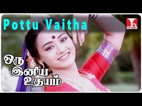 Oru Iniya Udhayam Tamil Movie Songs | Pottu Vaitha Video Song | Vijayakanth | Amala | Hornpipe