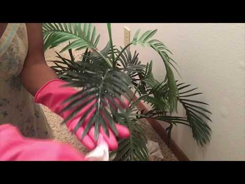 CLEAN WITH ME   FAKE PLANTS