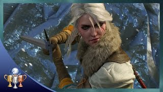 The Witcher 3 Wild Hunt Ending - Entire Final Mission & Boss Fights With Mostly Good Endings