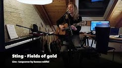 Fields of Gold - Sting,  Loopcover by hannes wölfel
