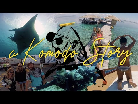 Best Scuba Diving Komodo National Park With Manta Rhei Dive Shop Flores Indonesia