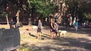 В Одессе от теракта пострадало здание СБУ