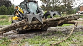 300 Series Skid Steers and Compact Track Loaders