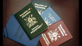 Gov't to get tougher on dual citizenship applications