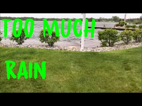 mowing-large-water-soaked-yards