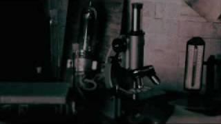 lego big morl 「Ray」 Music Video