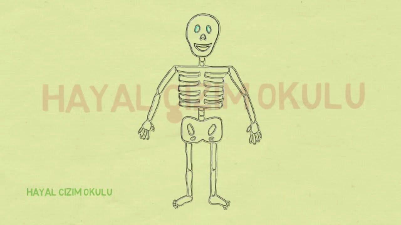 Iskelet Nasil Cizilir Iskelet Cizimi Youtube