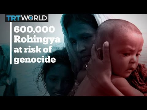 Over 600,000 Rohingya face 'serious risk of genocide'