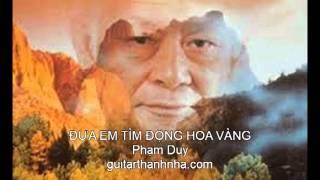 ĐƯA EM TÌM ĐỘNG HOA VÀNG - Guitar Solo