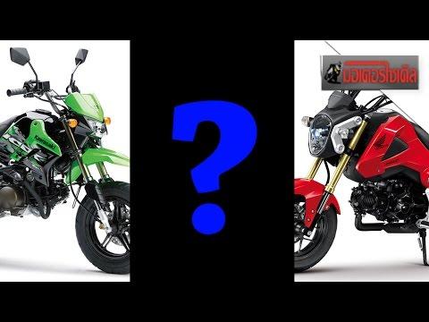 MSX125 + KSR Yamaha Mini Sport ท้าชน