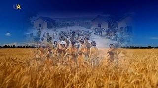 Украина: Лабиринты истории. Тайны Триполья
