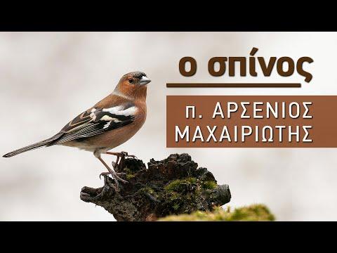 Ο Σπίνος - Παραδοσιακό τραγούδι – π. Αρσένιος Μαχαιριώτης