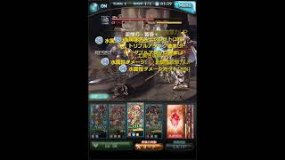 EX+ 0ポチ 黄龍 カグヤ 水着イルノート Earth GW 0 button otk with support kaguya