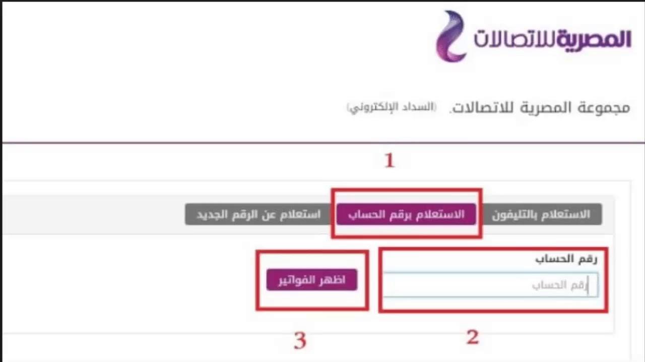 استعلم عن فاتورة التليفون الارضي شهر يناير 2018 موقع المصرية للاتصالات