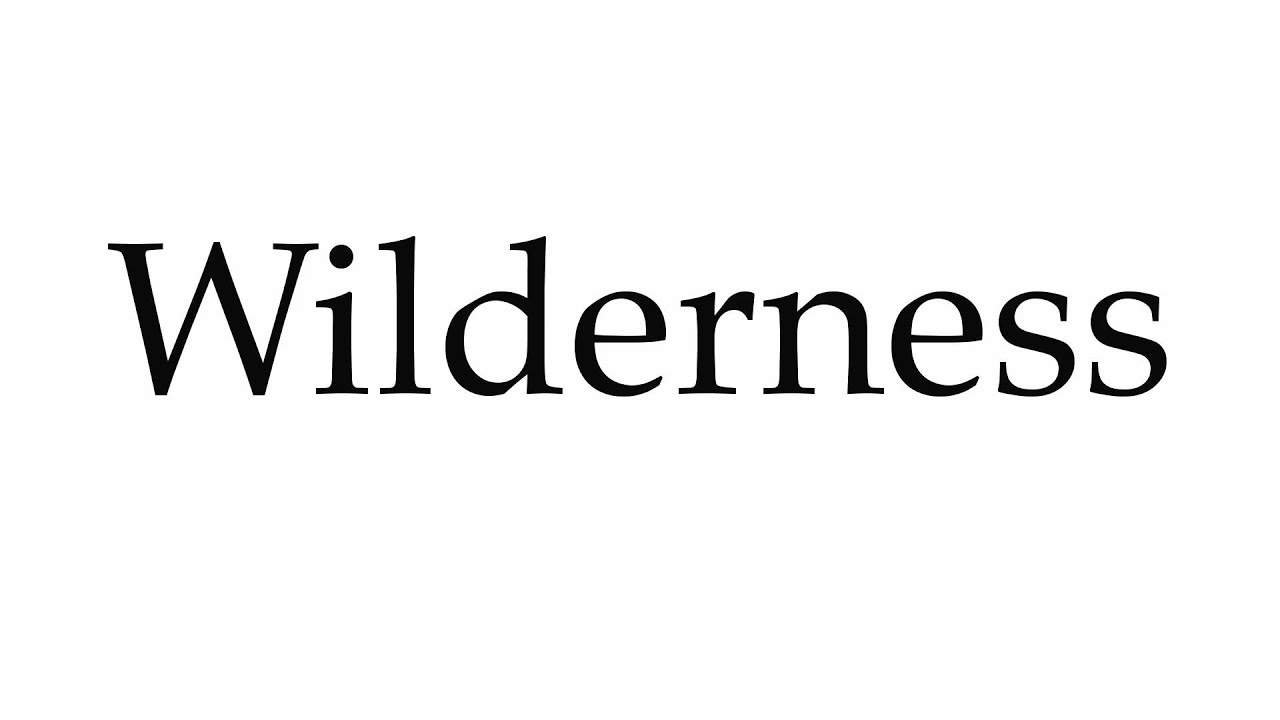 How to Pronounce Wilderness