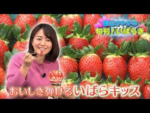 磯山さやかの旬刊!いばらき『茨城のイチゴ』(平成30年1月12日放送)