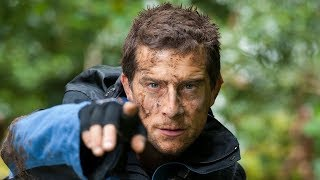 Bear Grylls and Ray Mears try and survive in a forest...