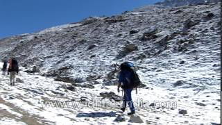 Climbers trekking towards the top: Everest expedition