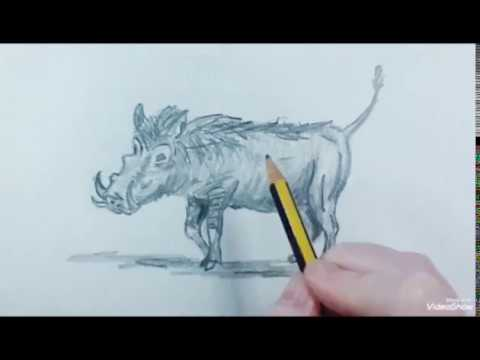 How To Draw A Facocero Speed Como Dibujar Un Jabalí Rápido Youtube