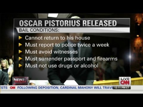 South African law expert on Pistorius