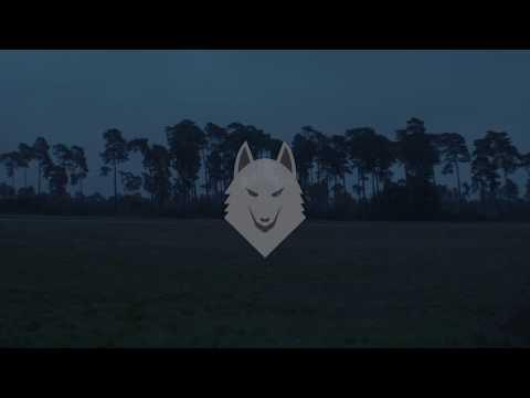 Wolf Player, Vulpes feat. Michael Lane (LYRIC VIDEO)