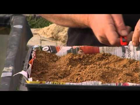 Lieblings Wie pflanze ich eine Seerose? - YouTube &EK_53