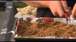 Wie pflanze ich eine Seerose?