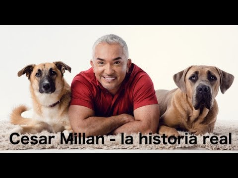 la vida verdadera de Cesar Millan del encantador de perros