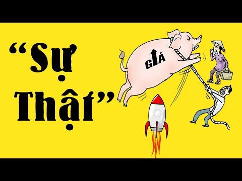 Nguyên nhân thật sự thịt Lợn tăng giá | Những hệ lụy nghiêm trọng