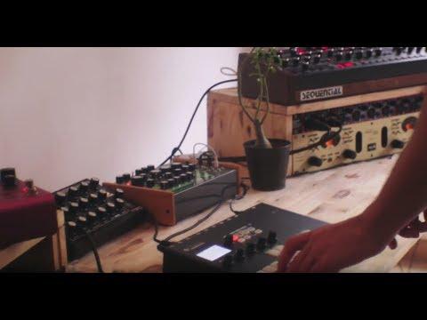 AXEL RIGAUD — BAOBAB (Pyramid studio session #1)