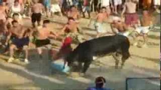 bull vs man man wins part1 light bika és ember 公牛與人