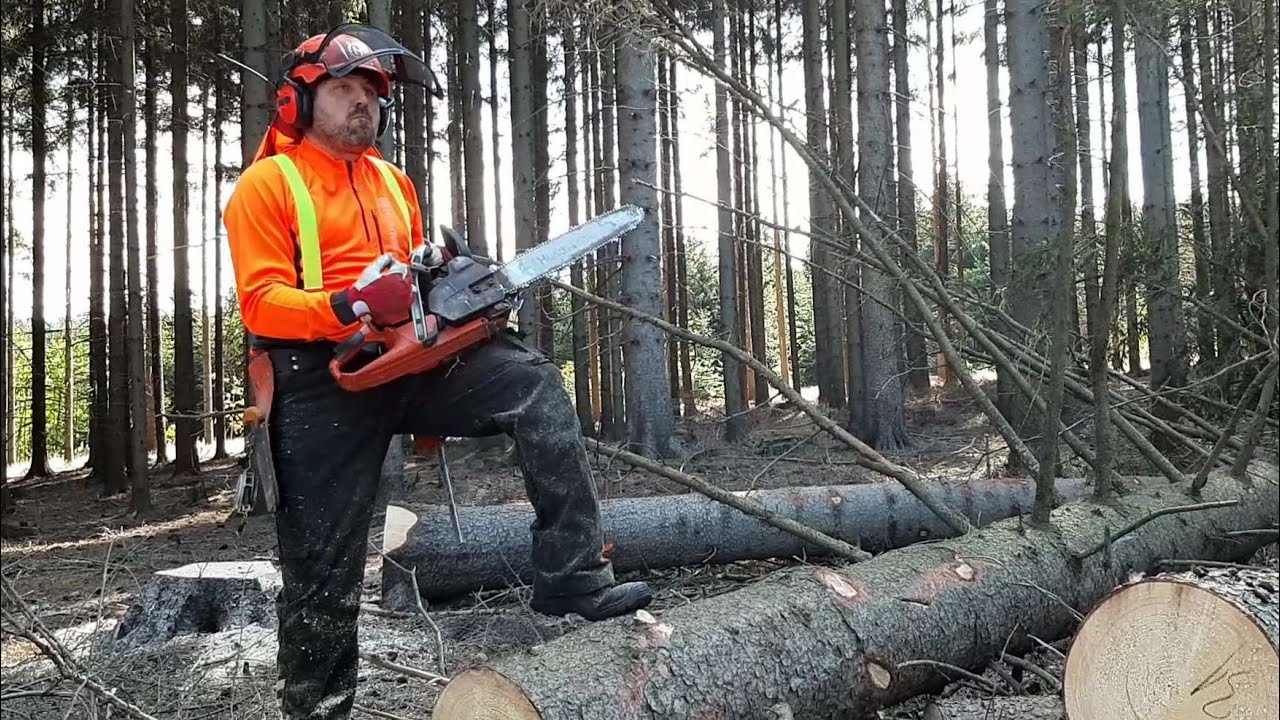 Lumberjack Small Harvester with the best chainsaw, GARDEN AND FOREST