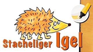 Igel zeichnen lernen (die stachelige Kugel mit Fellbauch) - How to draw a Hedgehog (Cartoon)