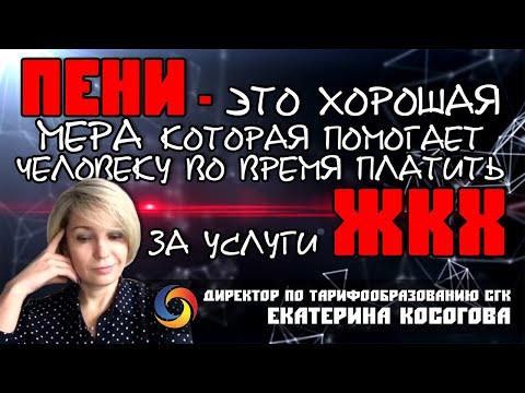 Коммунальные платежи при пандемии коронавируса / Платить или не платить / СГК / Екатерина Косогова