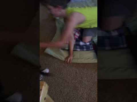 Cat does backflip