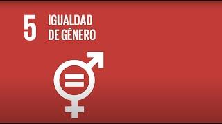 5  Igualdad de Género - Agenda 2030-