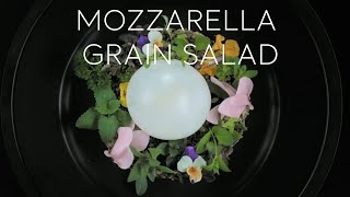 Turkey Home - Mozzarella Grain Salad