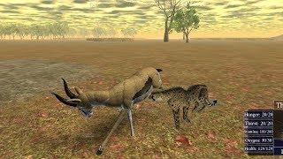 Roblox - Wild Savannah Short - Cheetah Hunts Gazelle