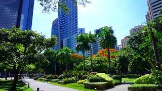 Scenic Ayala Triangle Gardens