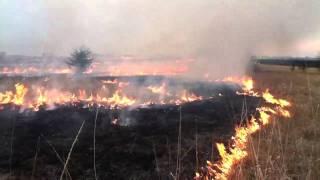 Range Burning, east central Kansas
